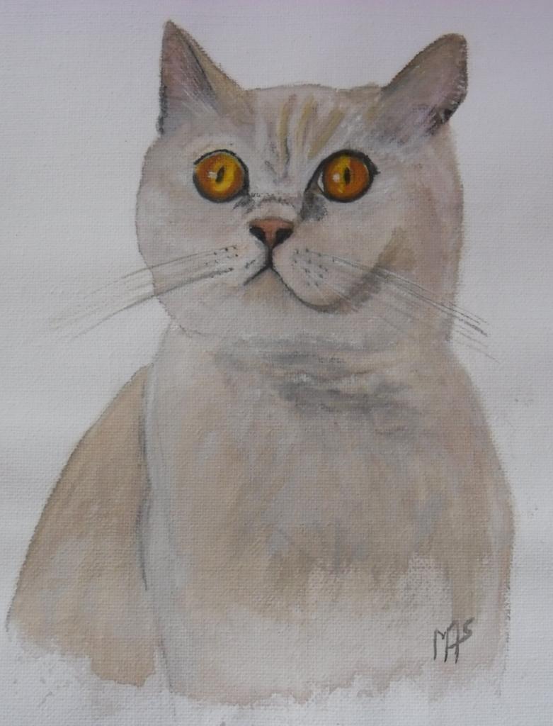 chat de Julie