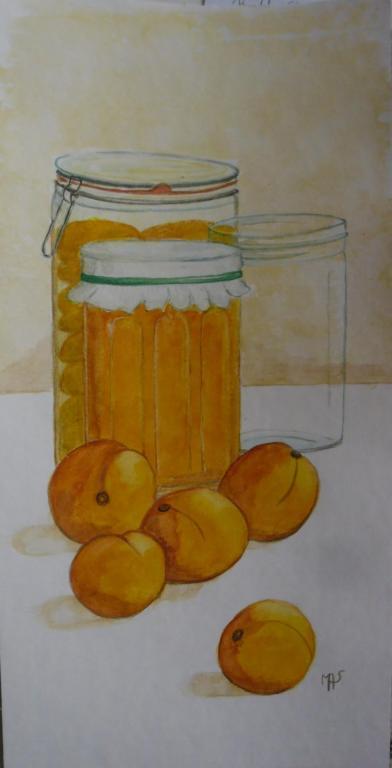 Conserves d'abricots