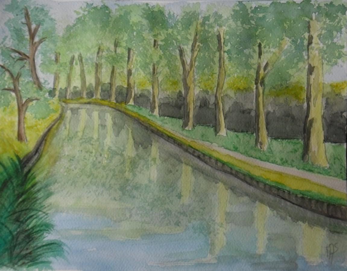 le canal en été