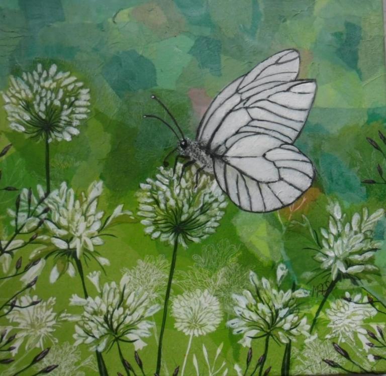 papillon sur fleurs d'ail