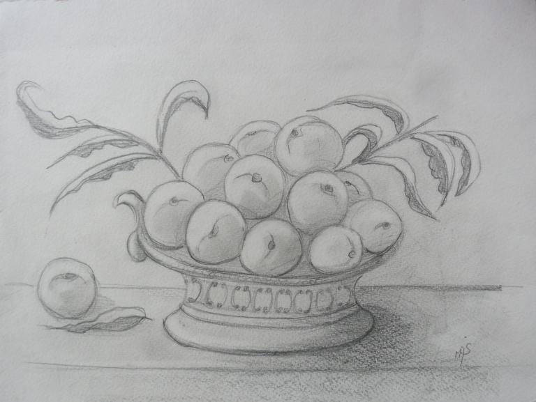 coupe d'abricots